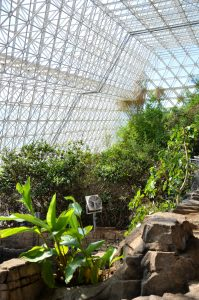 Overlooking the Marsh Biome at Biosphere 2 Center
